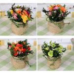 Оригинал Цветок для выращивания конопли Розы Растение Горшечный костюм Свадебное Платье Украшение