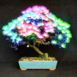 Оригинал Egrow 20Pcs Дерево Acacia Семена Colorful Albizia Дерево семян Джулибриссина Крытый посадочный материал из бонсай
