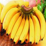 Оригинал Egrow 200Pcs Graden Banana Семена На открытом воздухе Карликовые фруктовые деревья Банановый молочный вкус Многолетние горшечные фрукты