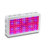Оригинал Bigin Double Chips LED Grow Light 600W / 800W / 1200W Полный спектр Grow Лампа для парниковых гидропонных внутренних заводов