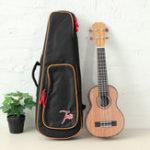 Оригинал ЕП-200 Том 21 дюймов атакуемый укулеле из красного дерева розового дерева с гитарного кофра