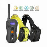 Оригинал PatpetP-collar610BEUPlugСобака Training Collar Перезаряжаемый Водонепроницаемы Дистанционный Pet Trainer