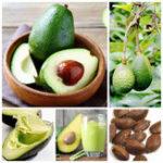 Оригинал Egrow 10Pcs / Pack Avocado Семена Persea Americana Mill Pear Seed DIY Здоровый фруктовый салат
