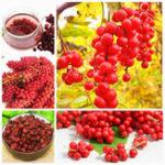 Оригинал Egrow 100Pcs/Pack Schisandra Seeds Chinese Magnolia Vine Edible Garden Fruit Tree Seed DIY Plants