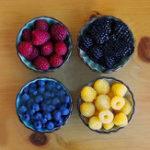 Оригинал Egrow 4000 шт / пакет смешанного цвета Raspberry Семена Каждый 1000 шт для синего черного красного желтого семени фруктов