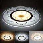 Оригинал 15W Modern Round Flower Acrylic LED Потолочные светильники Теплый белый / белый Лампа для гостиной AC220V