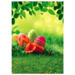 Оригинал 90x150cm Пасхальные яйца Трава Тема Виниловая фотография Фон Фон Проклятие для студии Фото