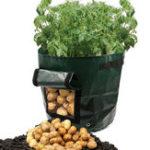Оригинал Graden 50L крупнотоннажный картофелеуборочный комбайн для выращивания картофеля PE Container Vefetable Сумки Taro Sweet Tomato Pouch With Window