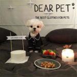 Оригинал Пижама для питомцев Собака Комбинезоны Одежда для Собака Teddy Bomei Small Собака Одежда Собакаs Пижамная футболка для животных