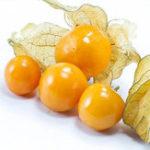 Оригинал Egrow 20Pcs / pack Physalis Семена Сад Фруктовый цветок Latern Golden Berry Tree Семена
