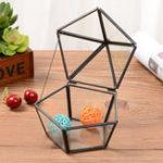 Оригинал Pentagon Geometric Clear Glass Jewelry Коробка Цветочный суккулент
