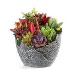 Оригинал Сад Домашние украшения Смола Sky Растение Мясистый травяной цветочный горшок Малый дом Shaped Trough Basket