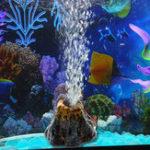 Оригинал Форма вулкана Аквариум Декор для рыбного бака Oxygen Насос Air Bubble Stone Air Насос Приводной резервуар для рыбы