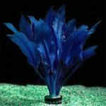 Оригинал Egrow 200Pcs / Pack Blue Аквариум Растения Семена Украшение рыбного бака Ландшафтная трава Семена