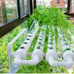 Оригинал 220V Hydroponic Grow Набор 36 Сайты 4 Трубы 1 слой Сад Выращивание посадки Коробка Овощ. Инструмент