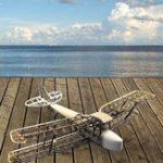 Оригинал Light Wood Фиксированное крыло Набор Retro Tiger Wings Exercise Machine Дистанционное Управление Aeromodelling Plane Toy