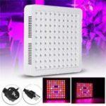Оригинал 300W LED Растущий светлый гидропонный полный спектр для Veg Flower Indoor Растение Семена