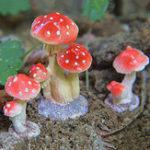 Оригинал Сад Украшения Mini Mushroom Toadstool DIY Декорации для ландшафтов Идеально подходит для Растение горшки