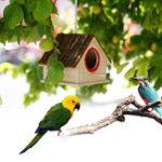 Оригинал Творческая птица гнездо Simulated Bark House Форма Птица Разведение Коробка Игрушки для животных
