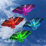 Оригинал Owl Ainimal Kite Single Line Breeze На открытом воздухе Развлечения для детей Delta Kites