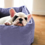 Оригинал 6 цветов Pet Собака Кот Площадь Soft Спящая Коробка Портативный Чистый цвет Pet кровать