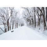 Оригинал 5x7FT Винил Зима Снег Дорога Речной Боковой Фотографии Фоне Фон Студия Проп
