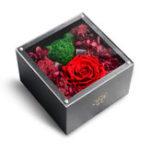 Оригинал XIAOMIЭквадорКрасныйвечныйрозовыймедведь One Цветочный подарок Коробка Цветы Украшения с подарком Коробка Подарки на день рождения для