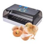 Оригинал Интеллектуальный инкубатор 110 / 220В яйца Цифровой полностью автоматический инкубационный инкубатор на 12 позиций