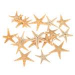 Оригинал 20шт мини морская звезда морская звезда ракушка пейзаж Пляжный Свадебное DIY ремесла изготовление украшений