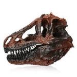 Оригинал Небольшой размер коричневый динозавр смола Череп модель домашнего офиса Аквариум украшения партии