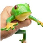 Оригинал TPR Frog Модель Squeeze Soft Эластичная Игрушка 15см Реалистичная Лягушка Новинки Апрельского Дурака Хитрые Игрушки Творческий Декомпрессионное Ук