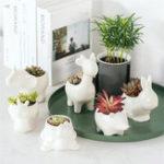 Оригинал Керамический суккулент Растение контейнер цветочный горшок Растениеer держатель ваза животных форма украшения
