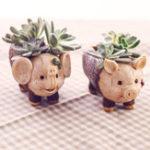Оригинал ChowDon новинка милый животных смола орнамент уникальный суккулент Растение цветочный горшок Растениеer