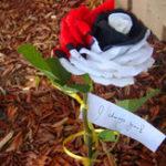 Оригинал Egrow 200 Шт. / Пакет Редкий Радужная Роза Семена Черный Красный Цвет Розы Цветок Бонсай Растения для Сад Посадка на балкон