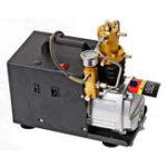 Оригинал 220V 40mpa 4500PSI High Pressure PCP Electric Насос Воздушный компрессор