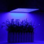 Оригинал 225LED Grow Light Blue Лампа Ультратонкая Панель Гидропоника Крытый Растение Овощной Цветок AC85-265V