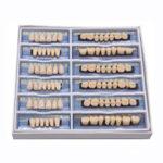 Оригинал              168шт 6 комплект Зубной протез акриловой смолы модель зубов верхний нижний оттенок 23 A2