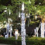 Оригинал              Водонепроницаемый На открытом воздухе AC110-240V 30 СМ SMD2835 LED Метеоритные Дождевые Трубки Фея Свет Рождества Сад Использовать