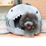 Оригинал              M / L Размер Уникальный Моющийся Soft Акула Рот Pet Собака Кот Пещера Кровать Pet House House