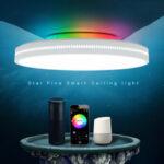 Оригинал              OFFDARKS AC200-240V 36W 400 мм Потолок Лампа Спальня Кухня LED Потолочный светильник RGB Затемнение APP WIFI Голосовое управление с контроллером Дистанционн