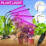 Оригинал              2/3/4 головки LED Grow Light Full Spectrum Растение Лампа для закрытой теплицы для овощей с адаптером питания